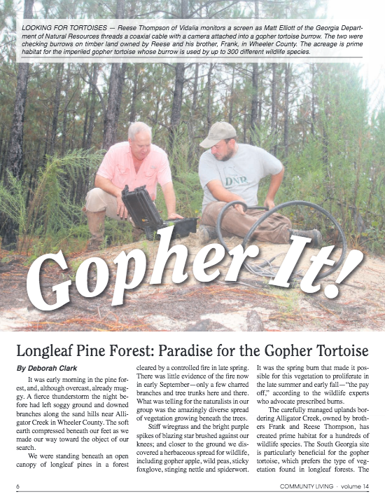 Cover: Gopher It!