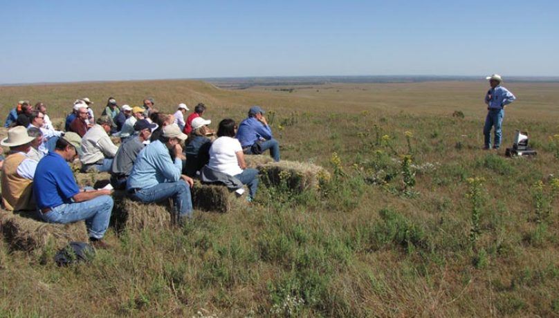 partners for conservation flint hills eastern kansas
