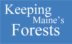 Keeping Maine's Forests