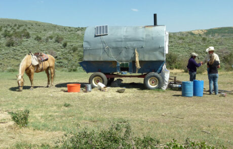Horse, covered wagon with solar panel, and people meeting