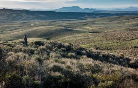 Landscape image or rolling hills