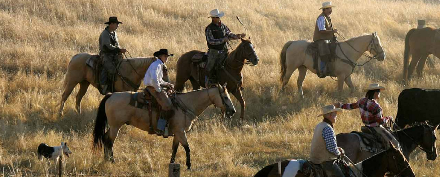 Landowners on Horseback