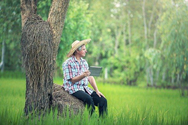 Man Sitting by a Tree