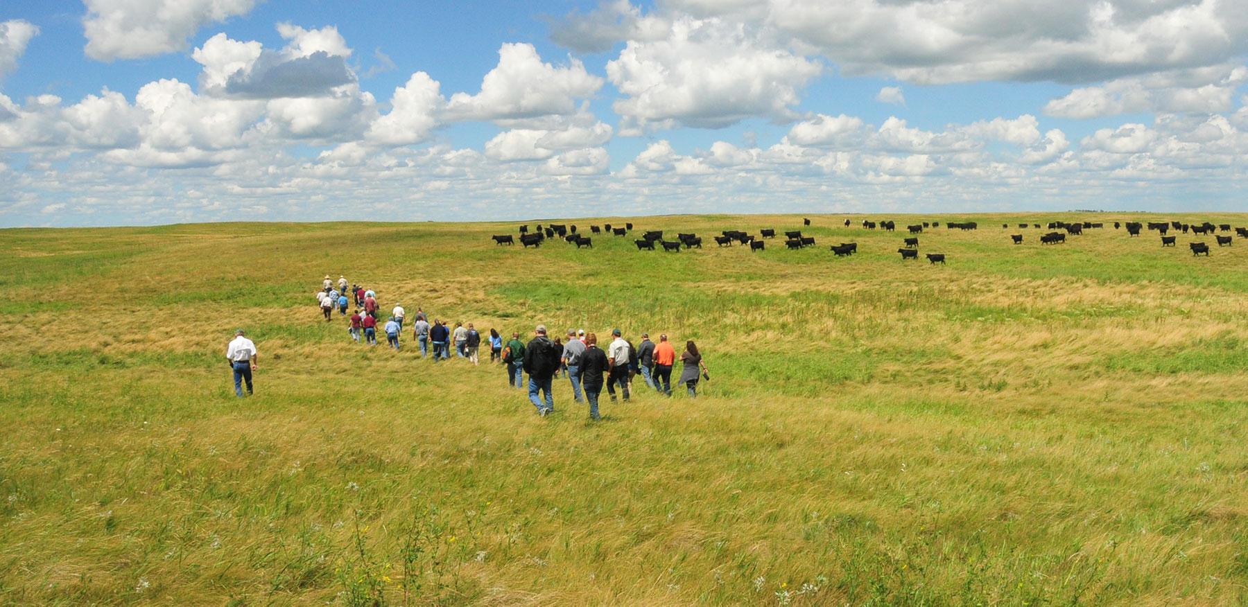 Group of People in a Prairie